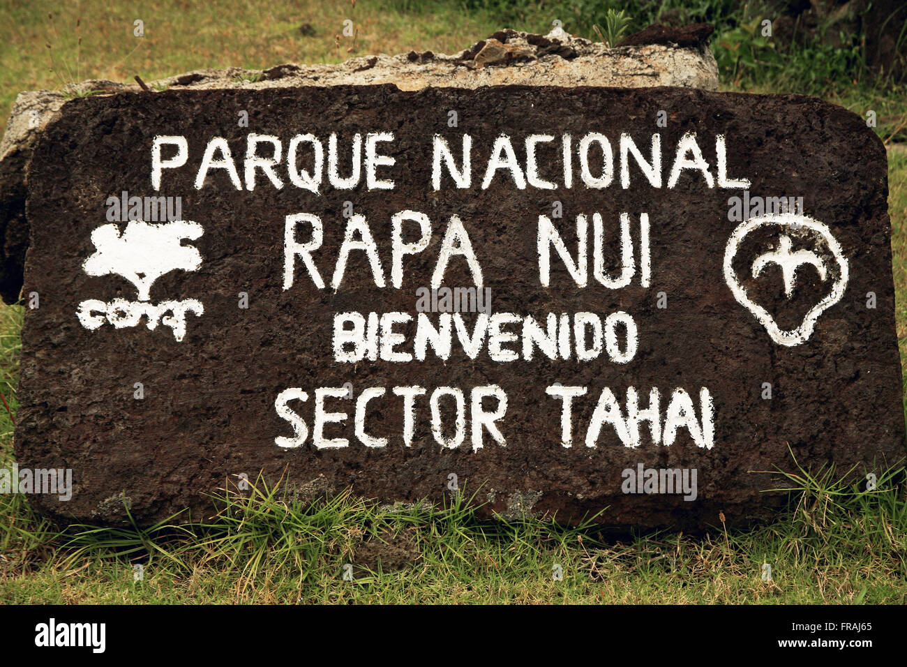 Detail of rock with guidance for industry Tahai the Rapa Nui National Park on Easter Island - Stock Image