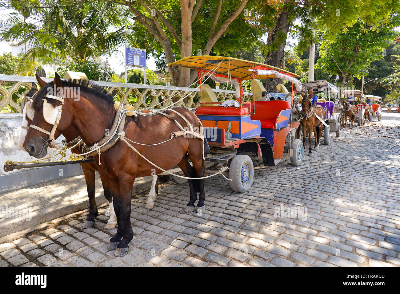Carriages for tourist ride in the neighborhood Paqueta - Island Paqueta - Stock Image