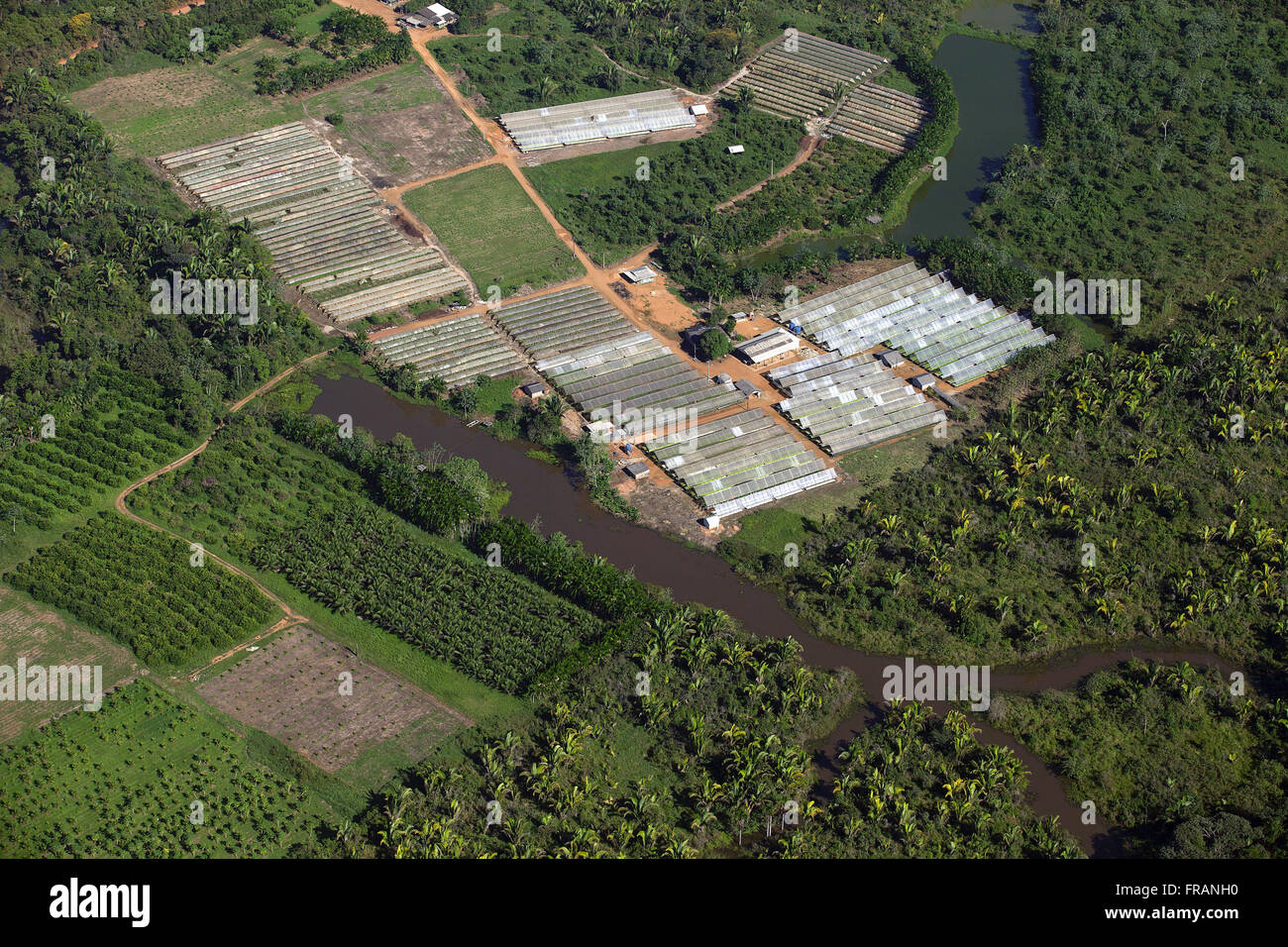 Aerial view of the horticultural production in the outskirts of town Stock Photo