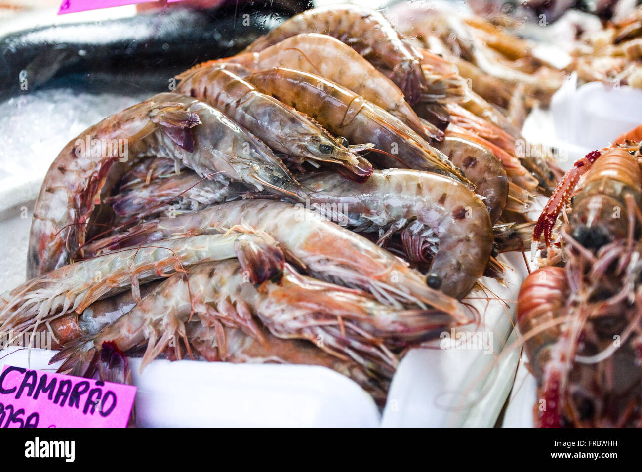 Cameroon sale at fish market - Stock Image