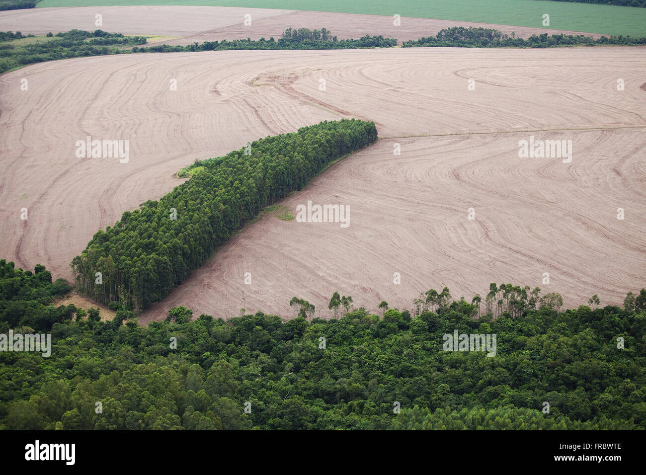 Countryside with cultivated area and area with preserved native forest - Stock Image