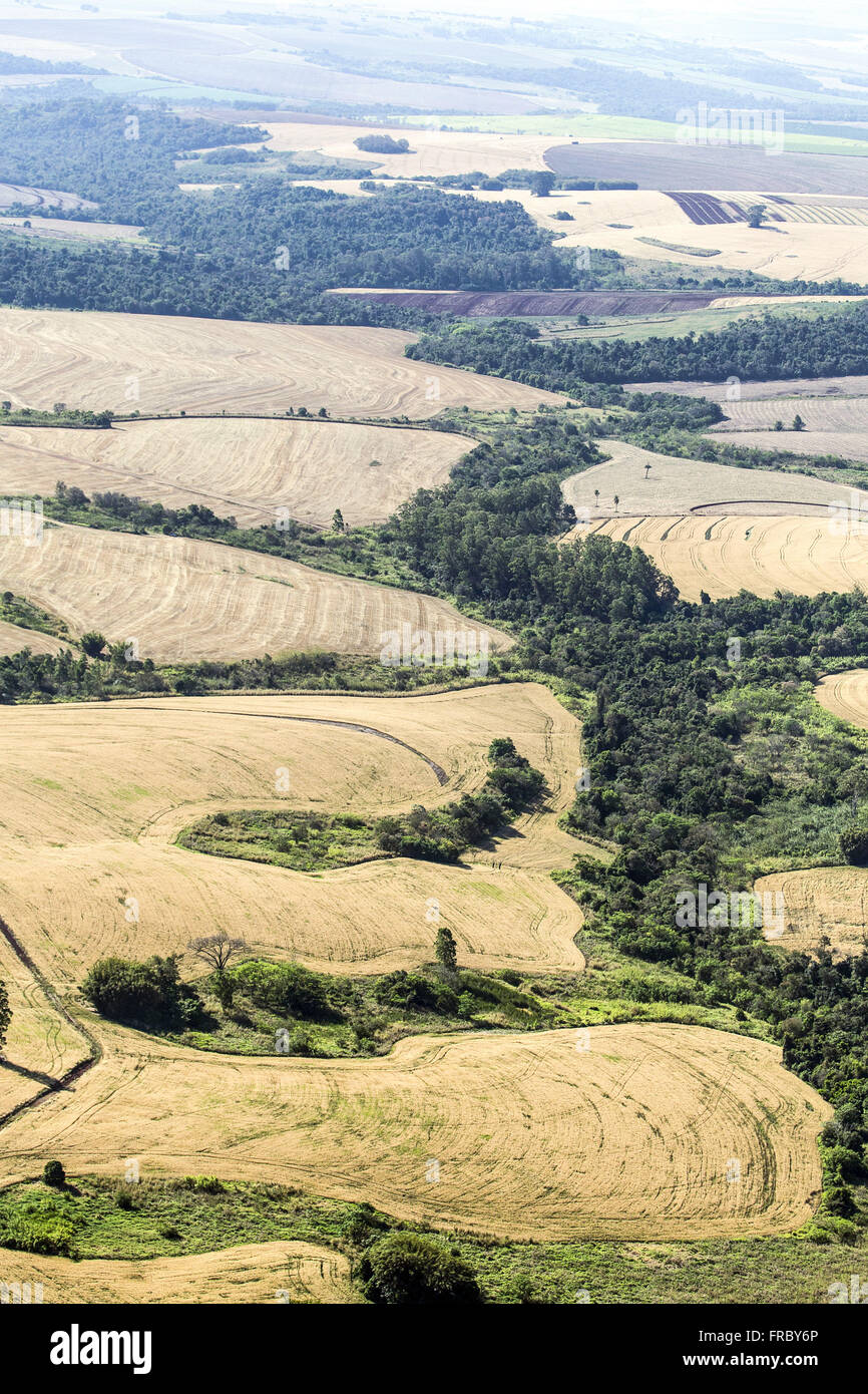 Aerial view of crops and native forest preserved - legal reserve - Stock Image