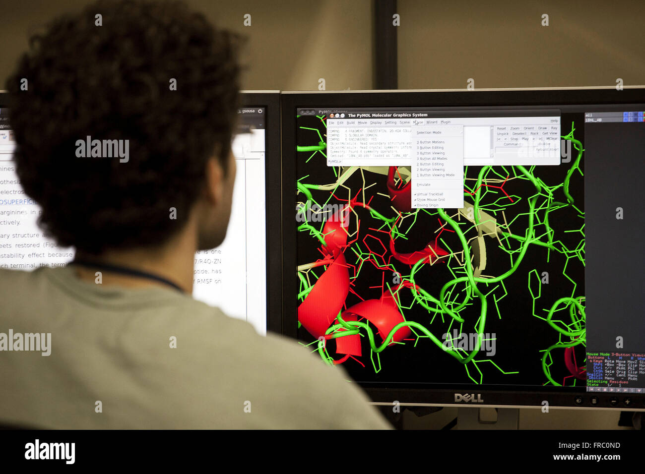 Images of protein in bio informatics Laboratory of INCA - National Cancer Institute - Stock Image