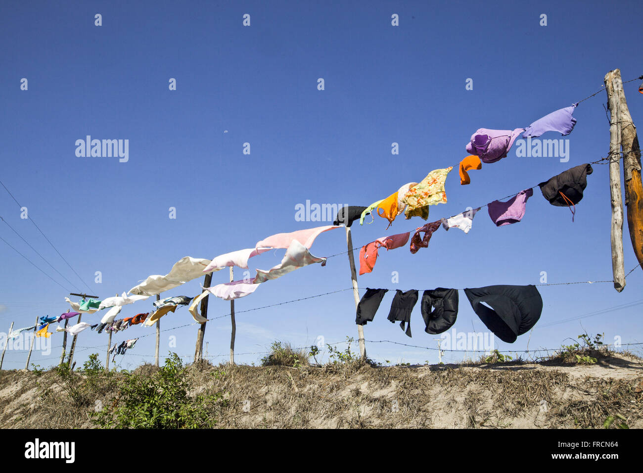 Clothes drying on clothesline - Stock Image