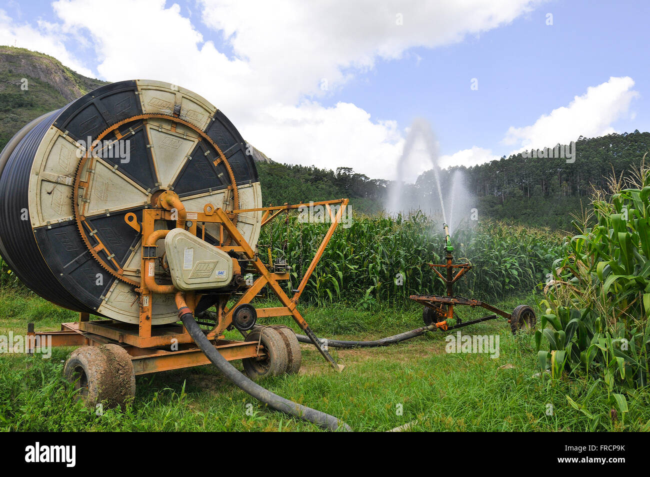 Irrigation with self-propelled reel cornfield in rural - Stock Image