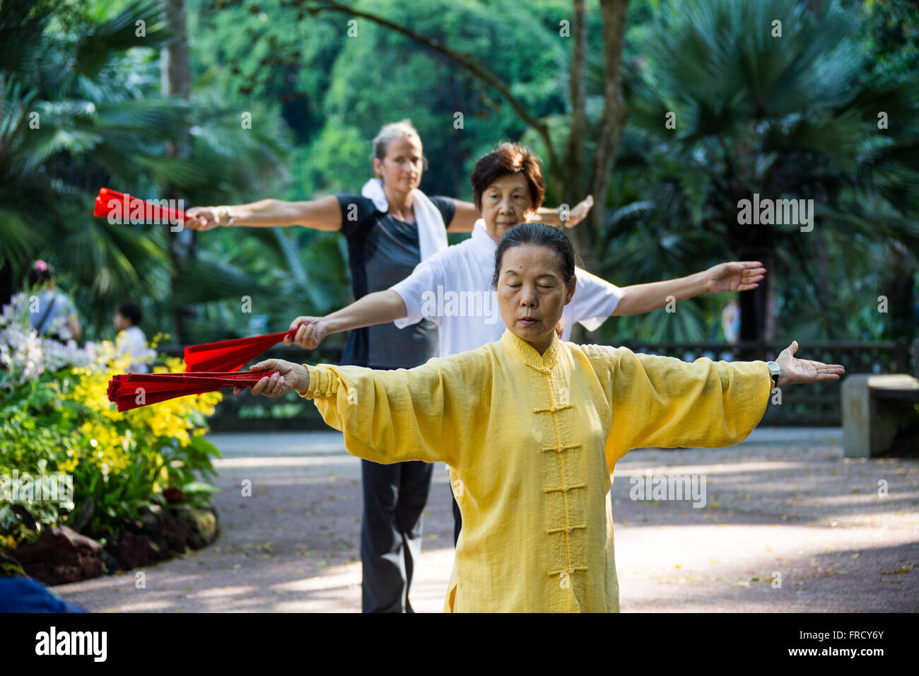 Tai Chi in the Botanic Gardens in Singapore - Stock Image
