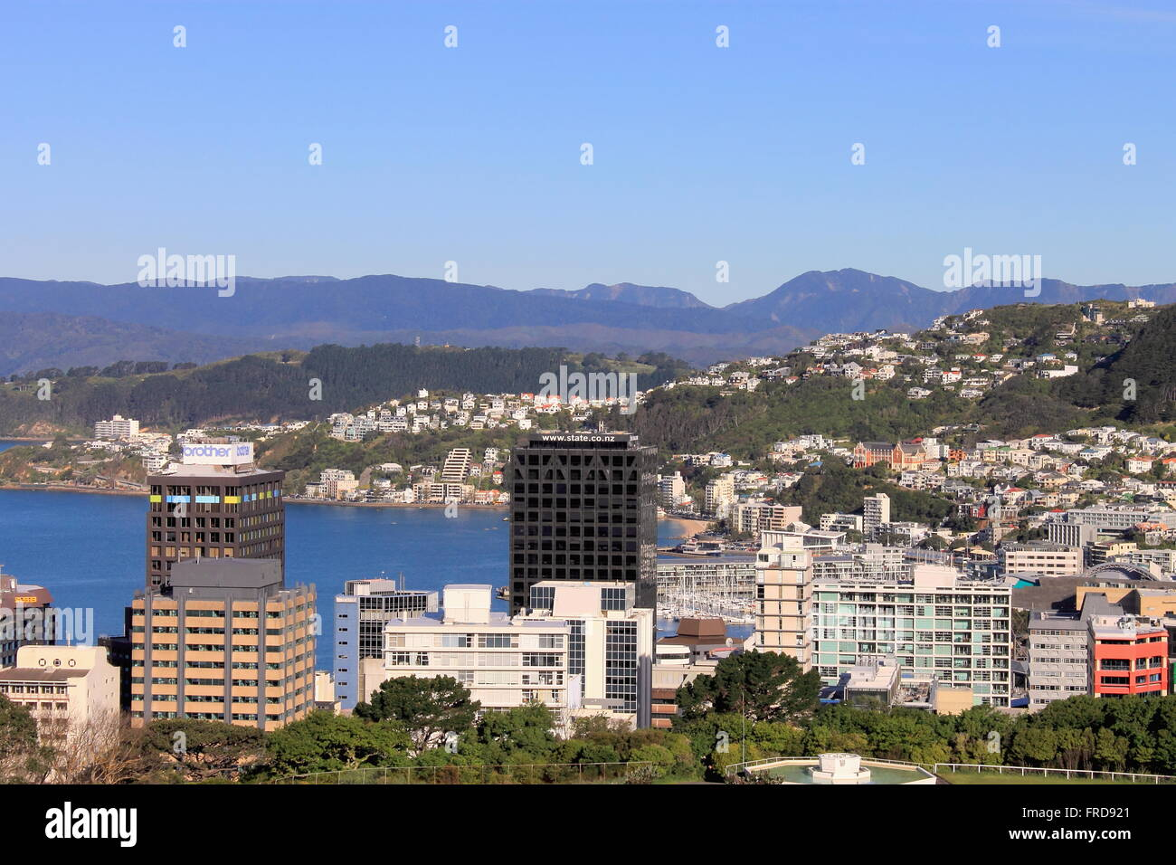 Wellington, New Zealand - November 5, 2015: Wellington City and Harbour - Stock Image