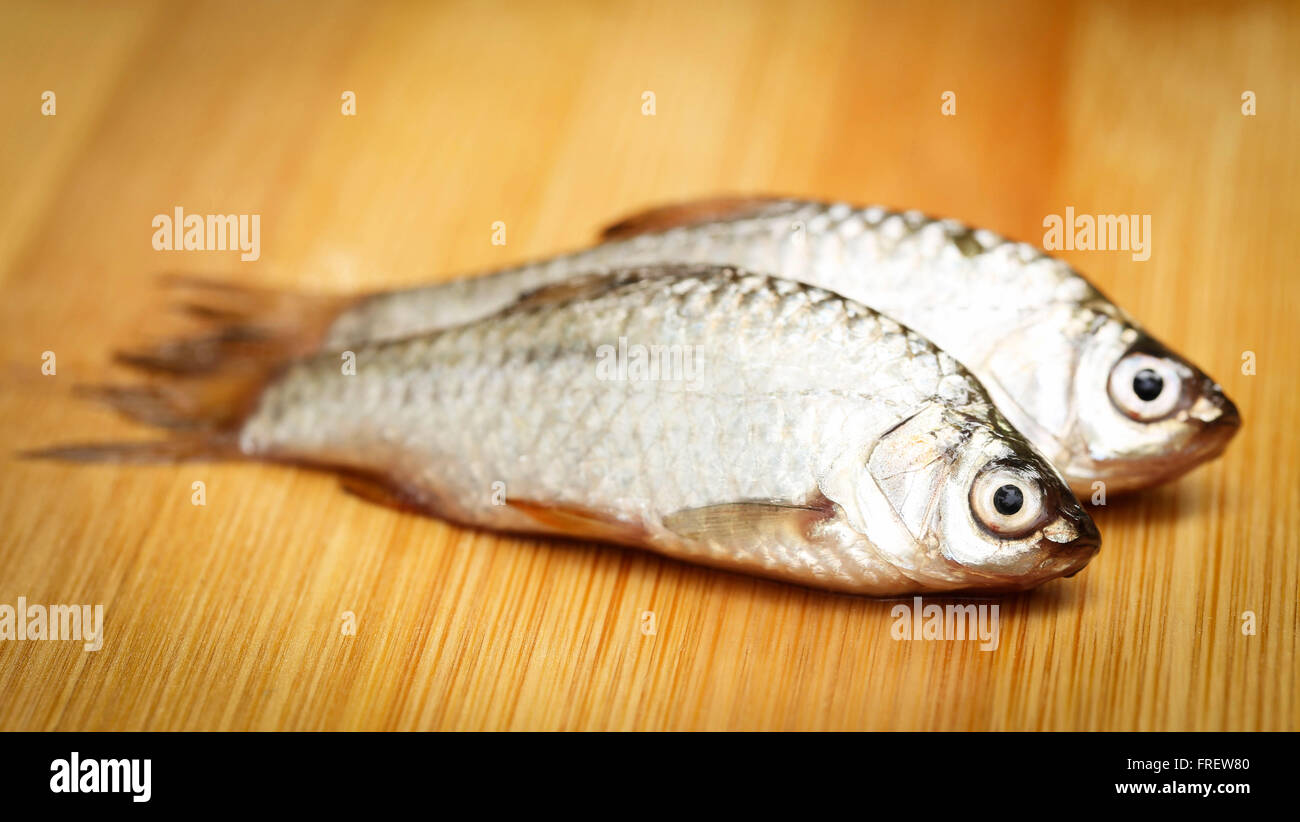 Swamp Barb of Indian subcontinent on wooden surface - Stock Image