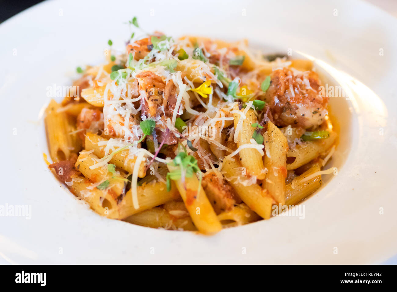 A plate of penne pollo (chicken) pasta in a tomato and red pepper sauce with Parmigiano Reggiano, boar bacon, and Stock Photo