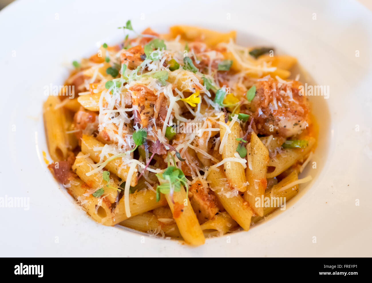 A plate of penne pollo (chicken) pasta in a tomato and red pepper sauce with Parmigiano Reggiano, boar bacon, and - Stock Image