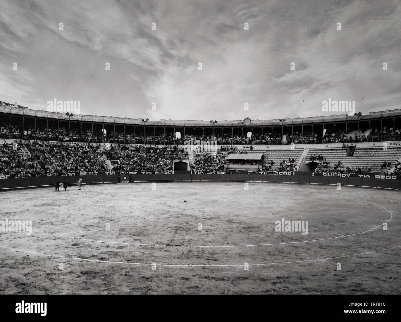 Bullfighting in Andalucia, Spain -  13/02/2013  -  Spain / Andalusia / Jerez de la Frontera  -  Bullfighting in Andalucia, Spain Stock Photo