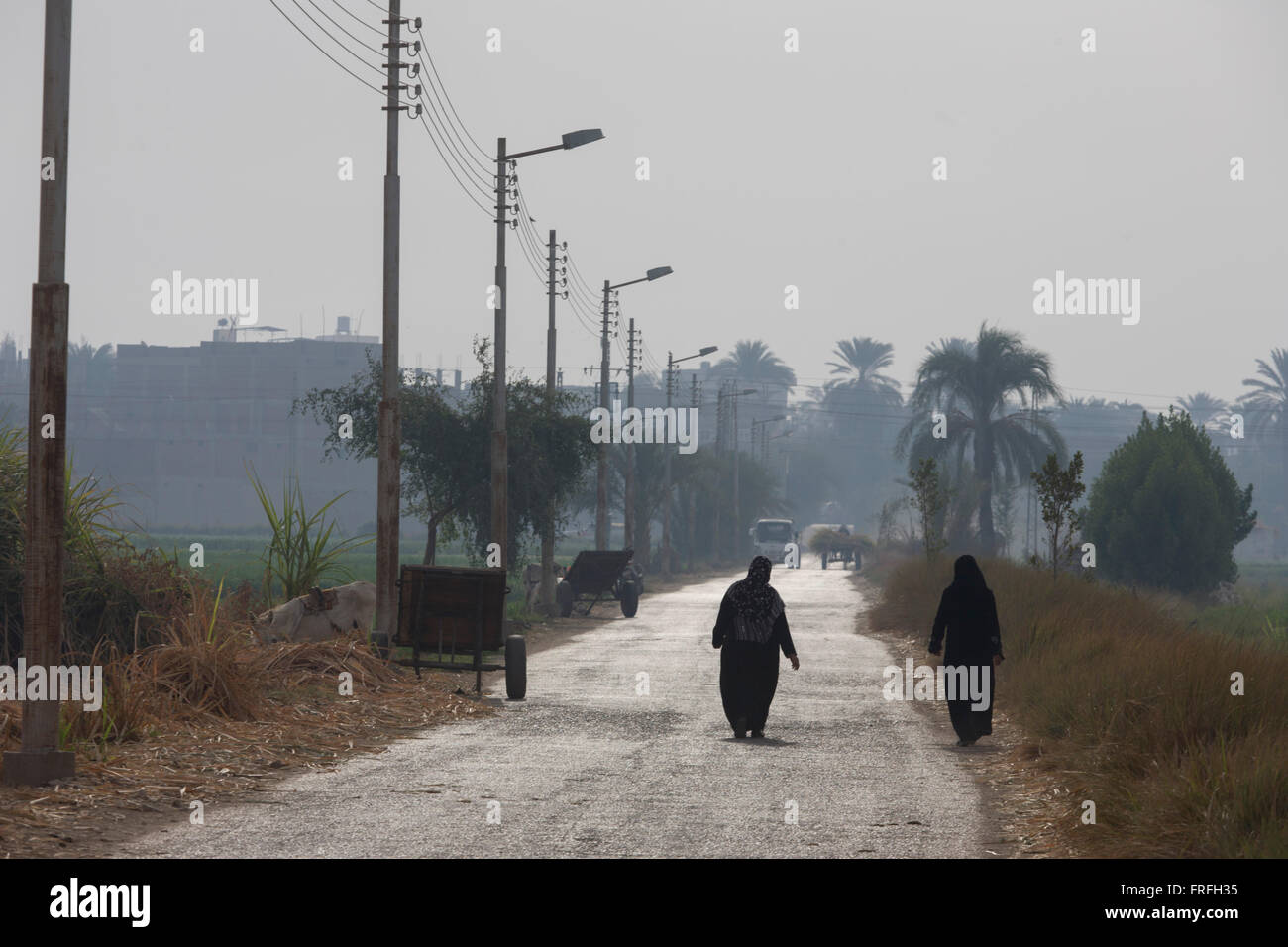 Local women walk along a hot road towards Qurna, a village on the West Bank of Luxor, Nile Valley, Egypt. In Egypt, - Stock Image