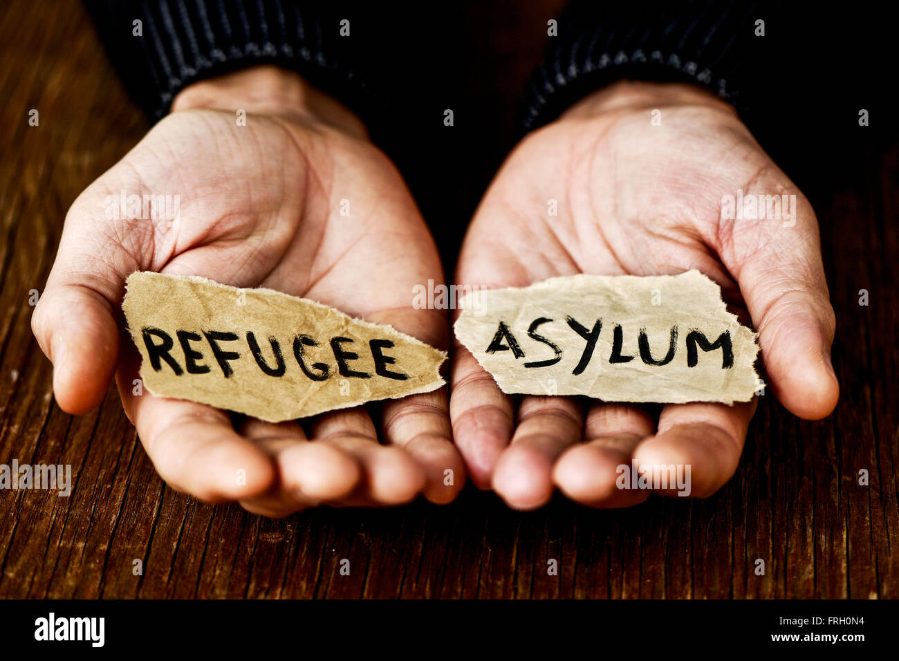 closeup of the hands of a young man with two pieces of paper with the words refugee and asylum written in each one, - Stock Image