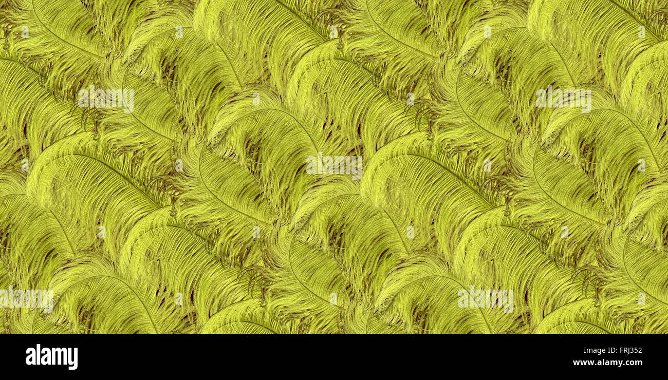 A seamless repeating pattern of chartreuse ostrich feathers - Stock Image