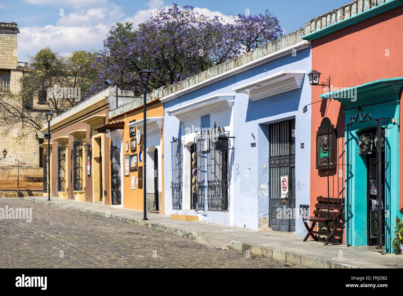 colorful row of upscale shop fronts on Calle 5 de Mayo with splendid blue blooming Jacaranda tree visible beyond - Stock Image