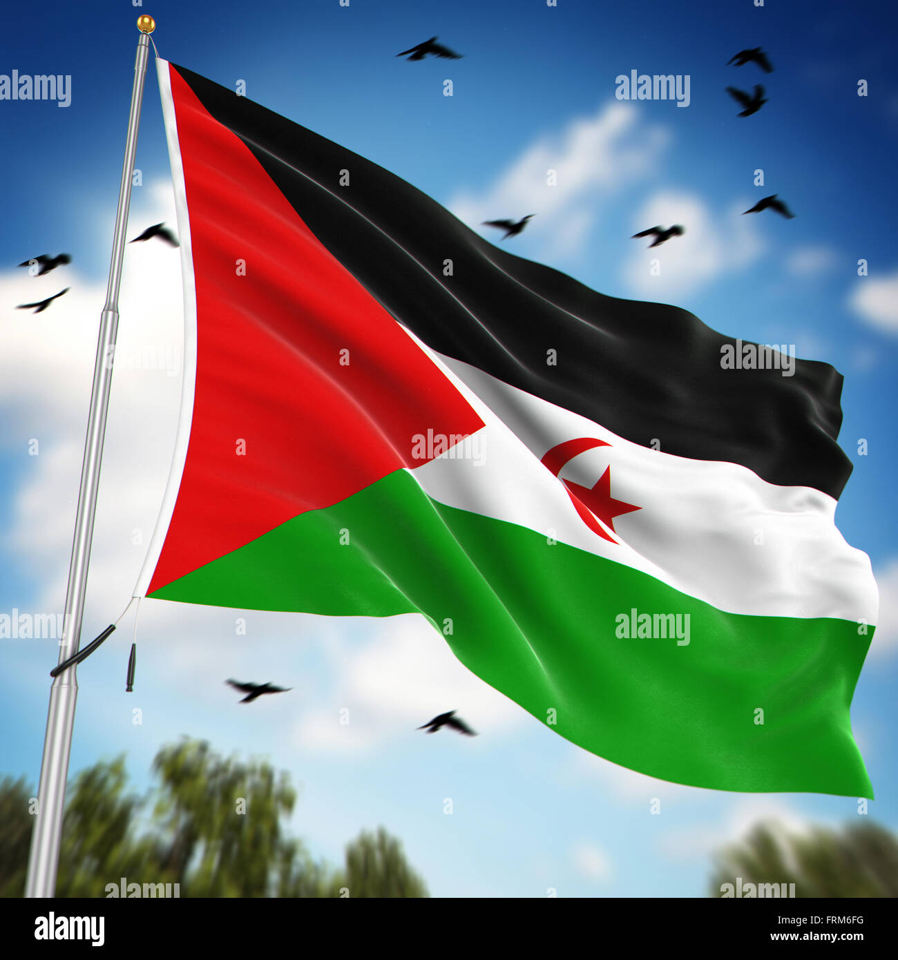 Flag of the Sahrawi Arab Democratic Republic , This is a computer generated and 3d rendered image. - Stock Image