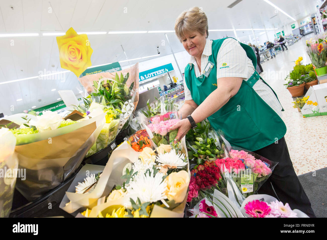 a woman works in the flower section of a Morrisons supermarket - Stock Image