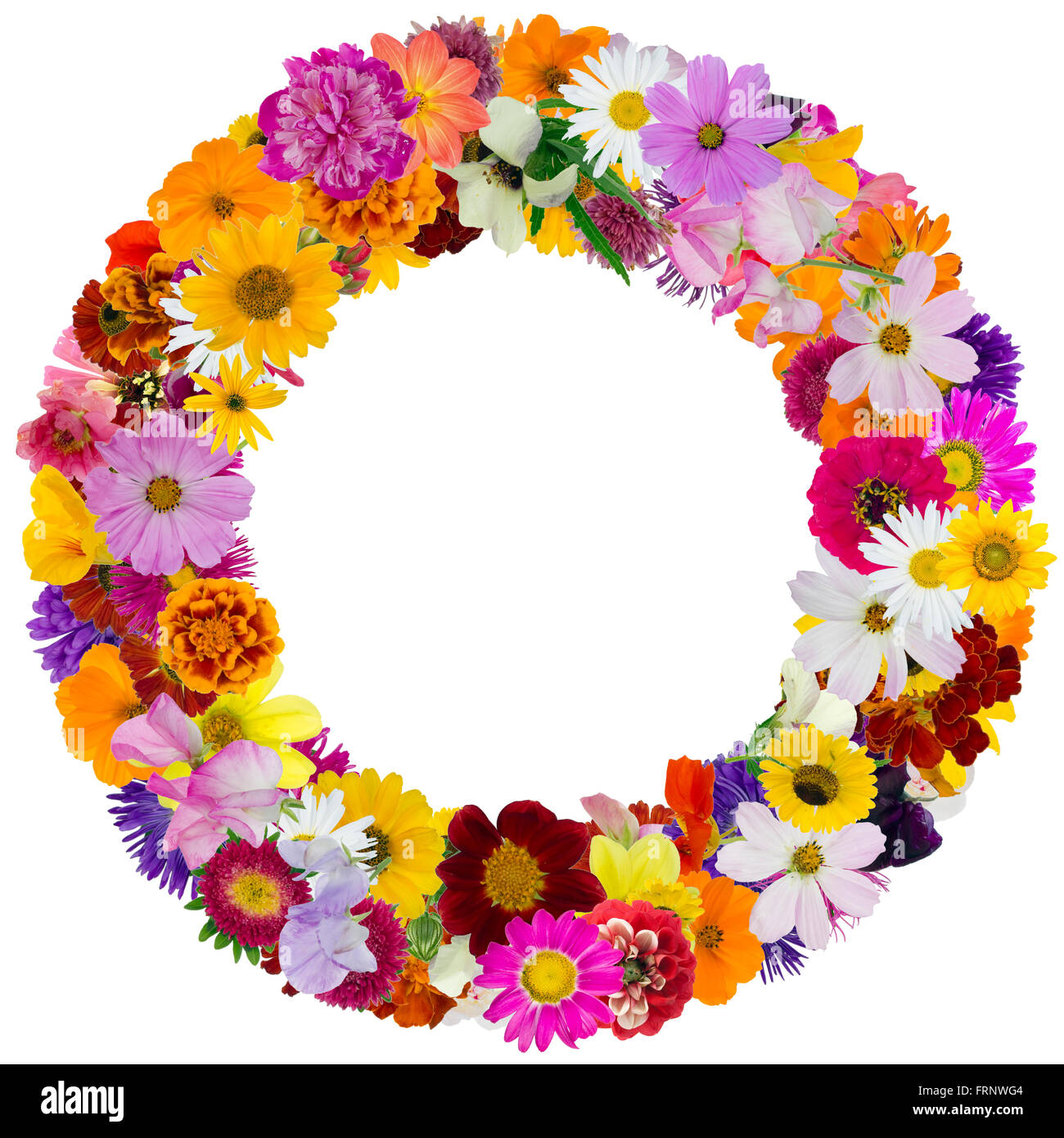 Round floral summer photo frame made from simple vivid fresh flowers. Isolated abstract collage Stock Photo