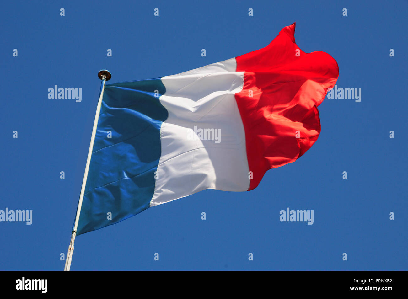 French flag fluttering in a brisk breeze against a bright blue sky. - Stock Image