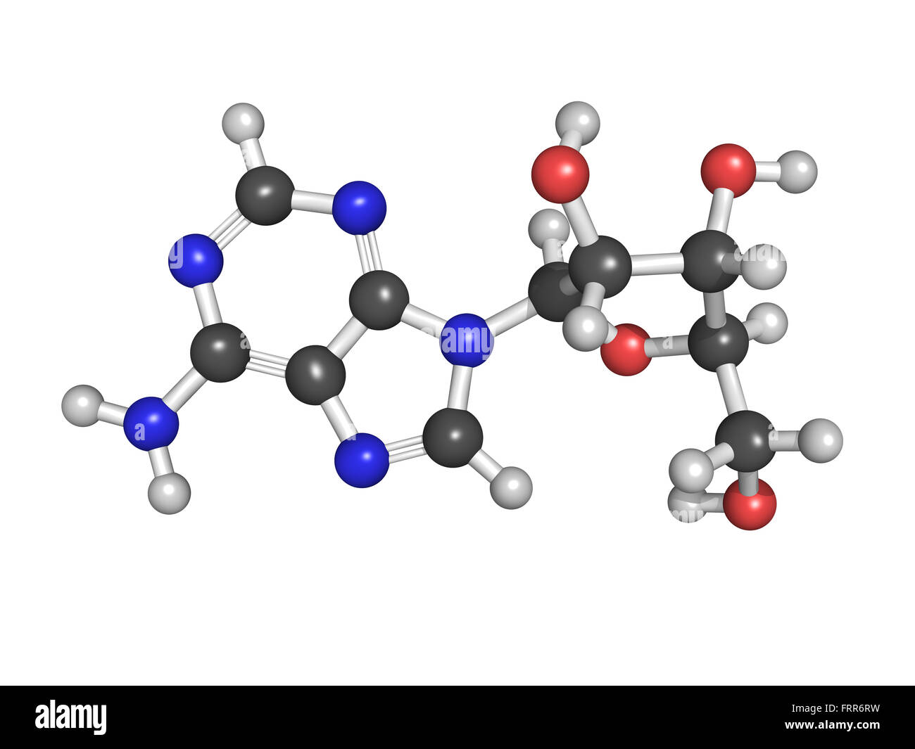 Adenosine (A) nucleoside molecule, chemical structure. This is one of the four building blocks of DNA. Adenosine - Stock Image