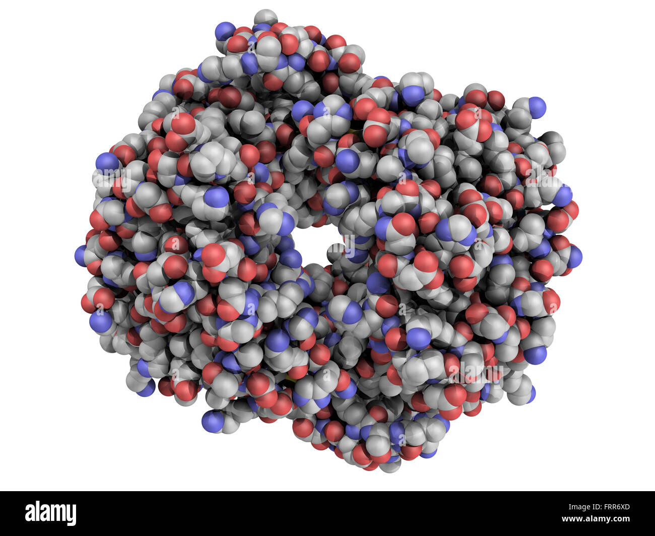 Chemical structure of human hemoglobin (Hb) protein molecule. Iron-containing oxygen transport protein found in - Stock Image