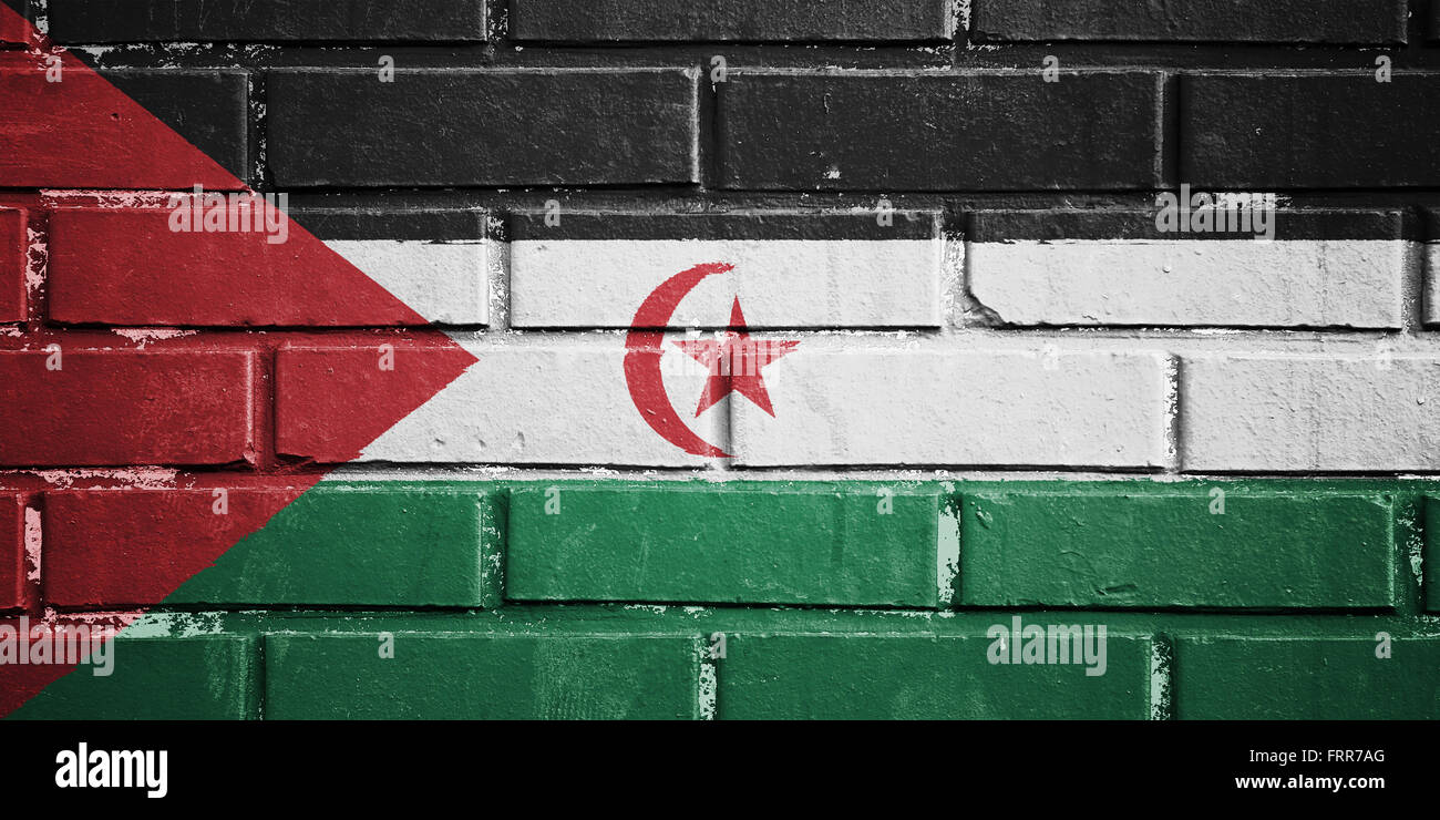Sahrawi Arab Democratic Republic flag on texture brick wall - Stock Image