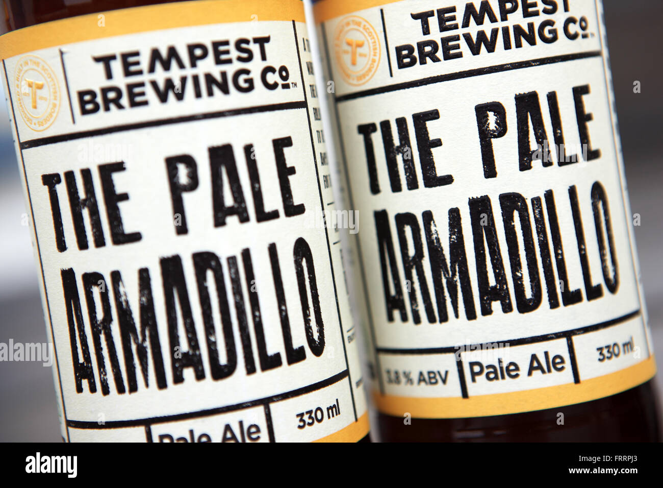 Pale Ale, The Pale Armadillo, by Tempest Brewing Co who produce craft beers in the Scottish Borders - Stock Image