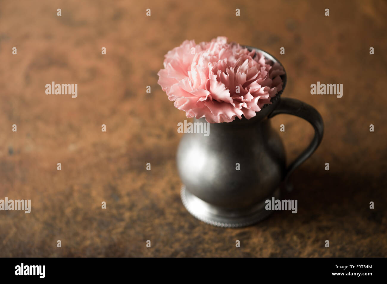 Carnation in the metal vase on the stone table  horizontal - Stock Image