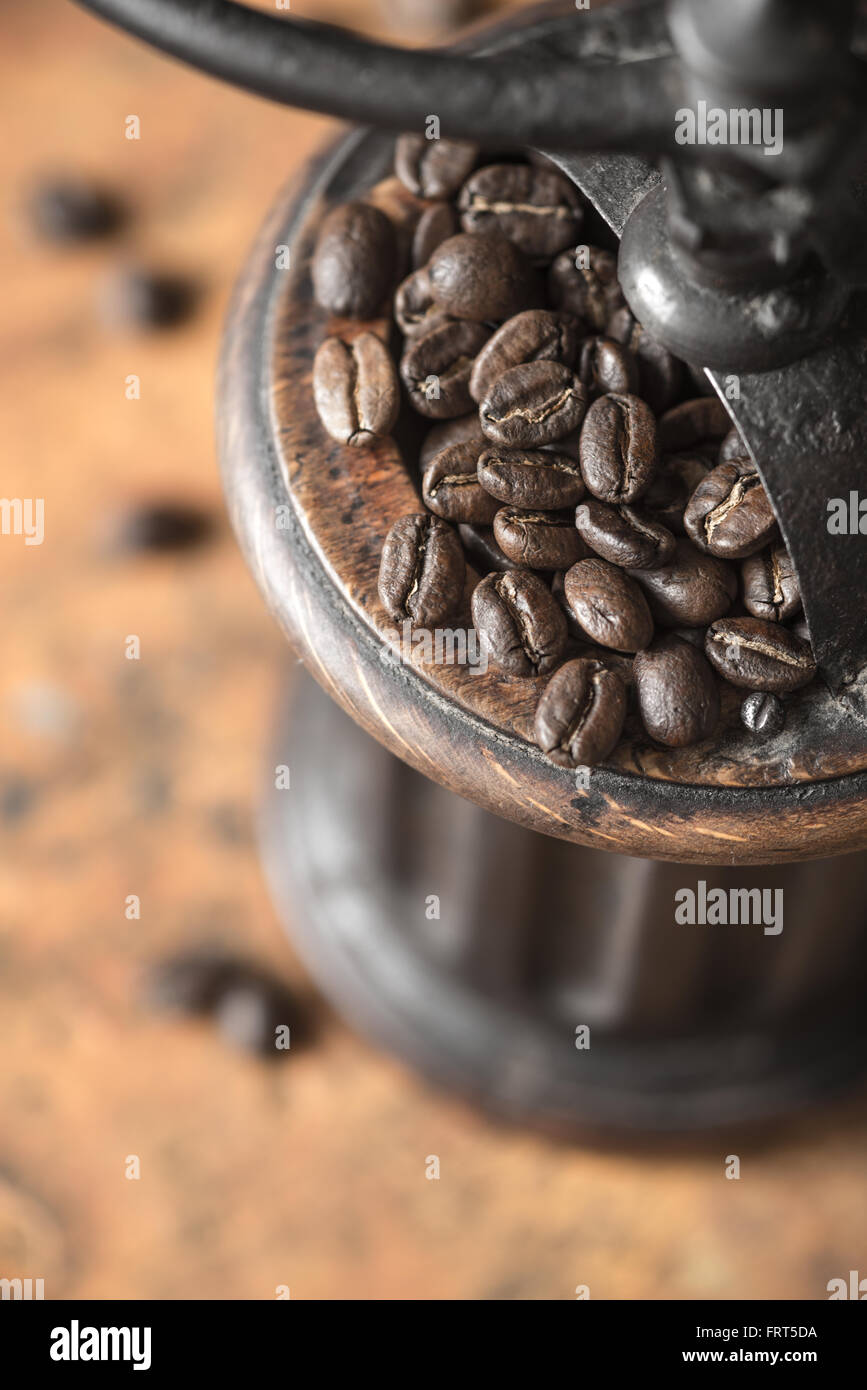Coffee beans in the coffee mill top view - Stock Image