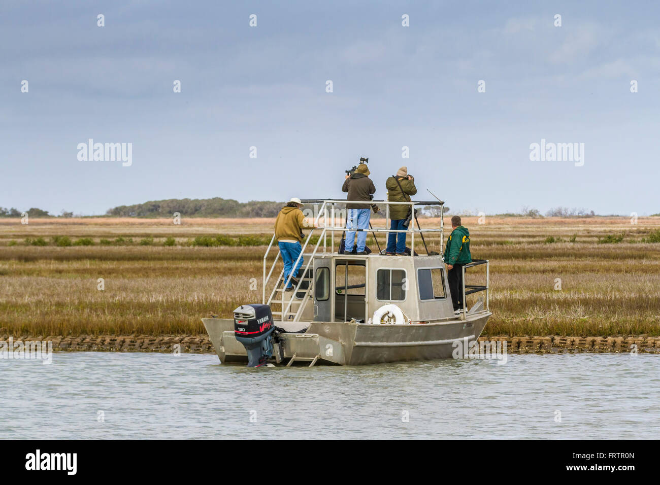 Photographers looking for Whooping Cranes in Aransas Pass National Wildlife Refuge. - Stock Image