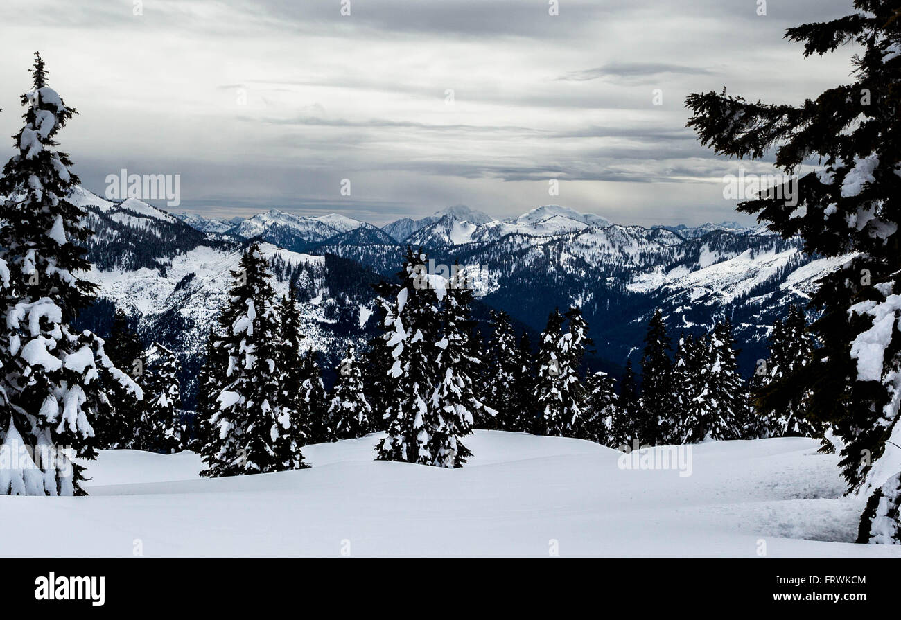 View of  from the Elfin Lakes trail, Garibaldi Park, BC Stock Photo