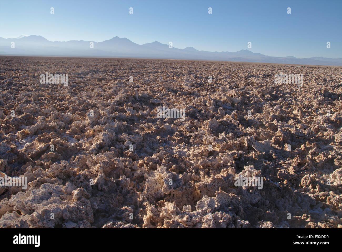 Salar de Atacama, Andes in Background, Chile - Stock Image