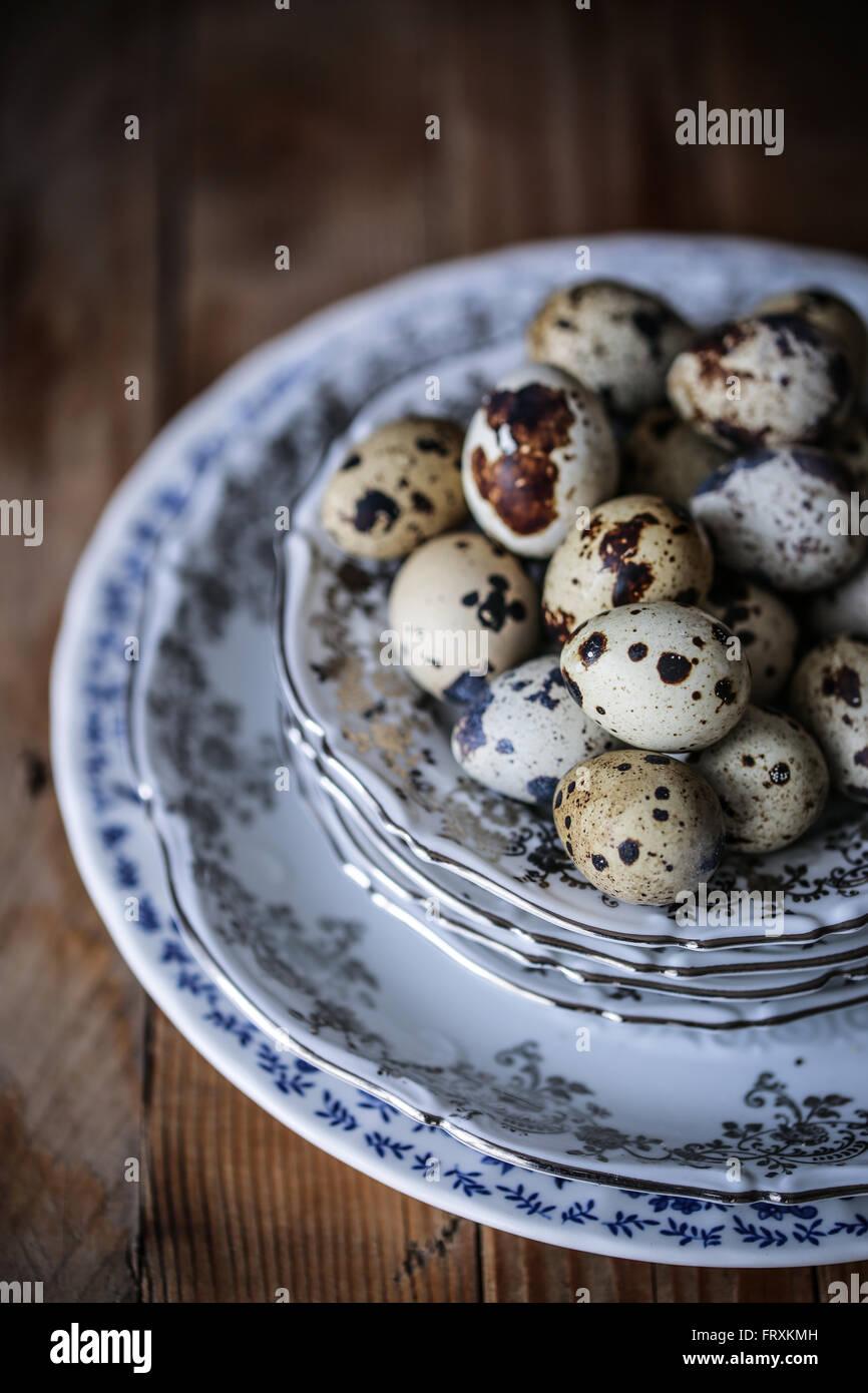 Quail eggs - Stock Image