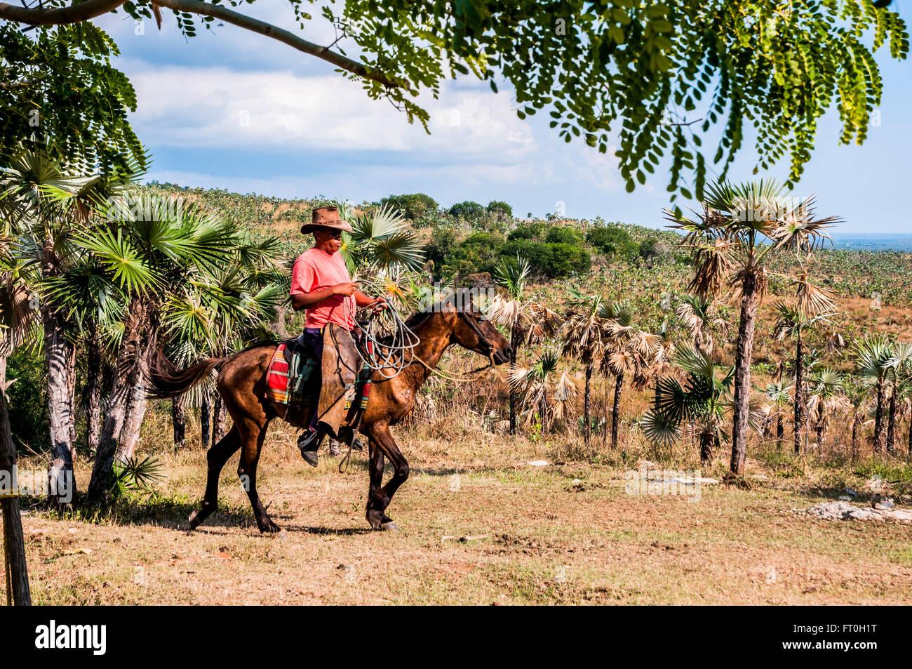 Valley de los Ingenios or Valley of the Sugar Mills, Cuba - Stock Image