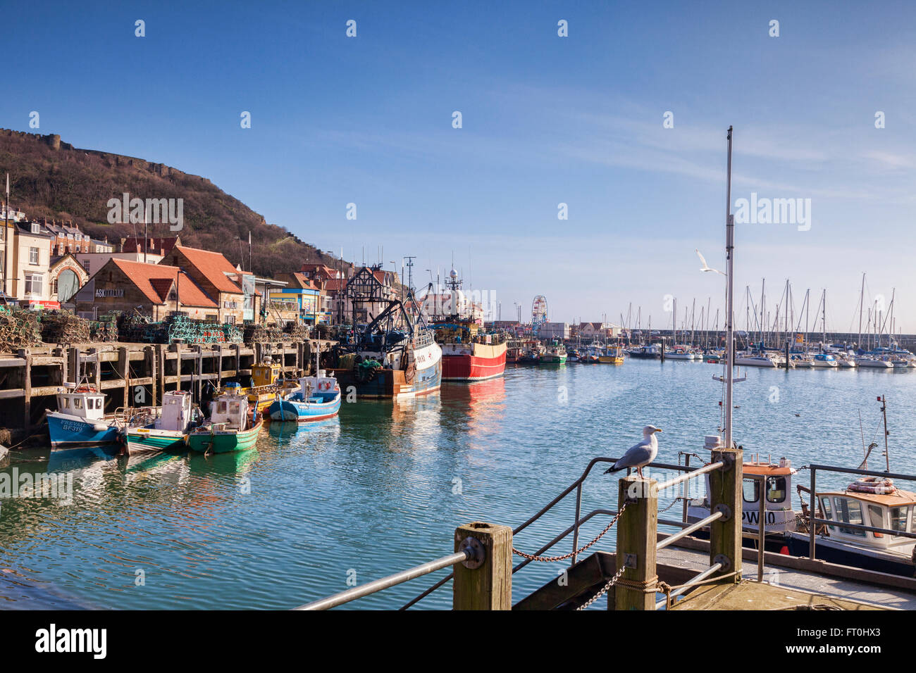 Scarborough Harbour, North Yorkshire, England, UK - Stock Image
