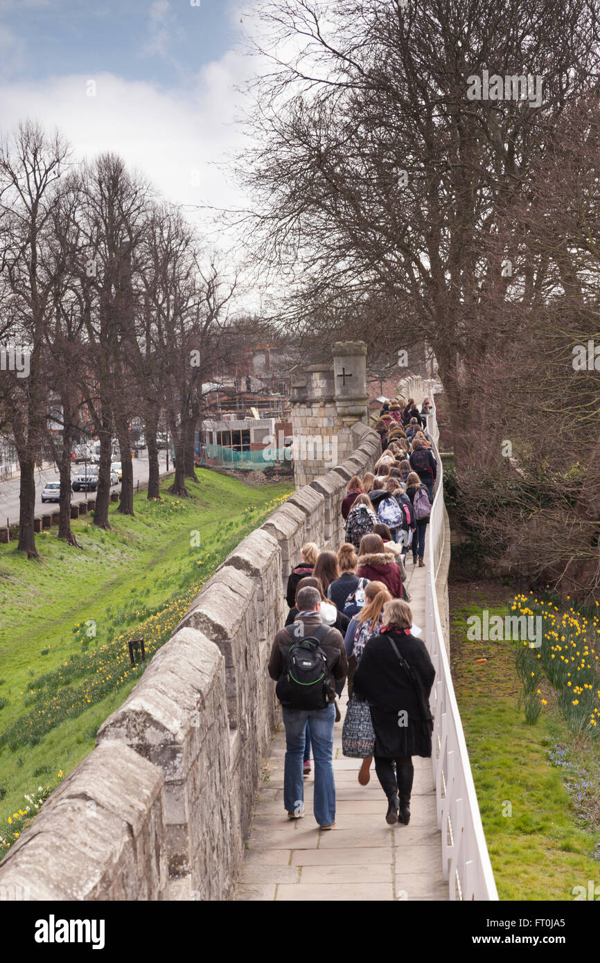 Students and teachers walk along the city walls of York, North Yorkshire, England, UK - Stock Image