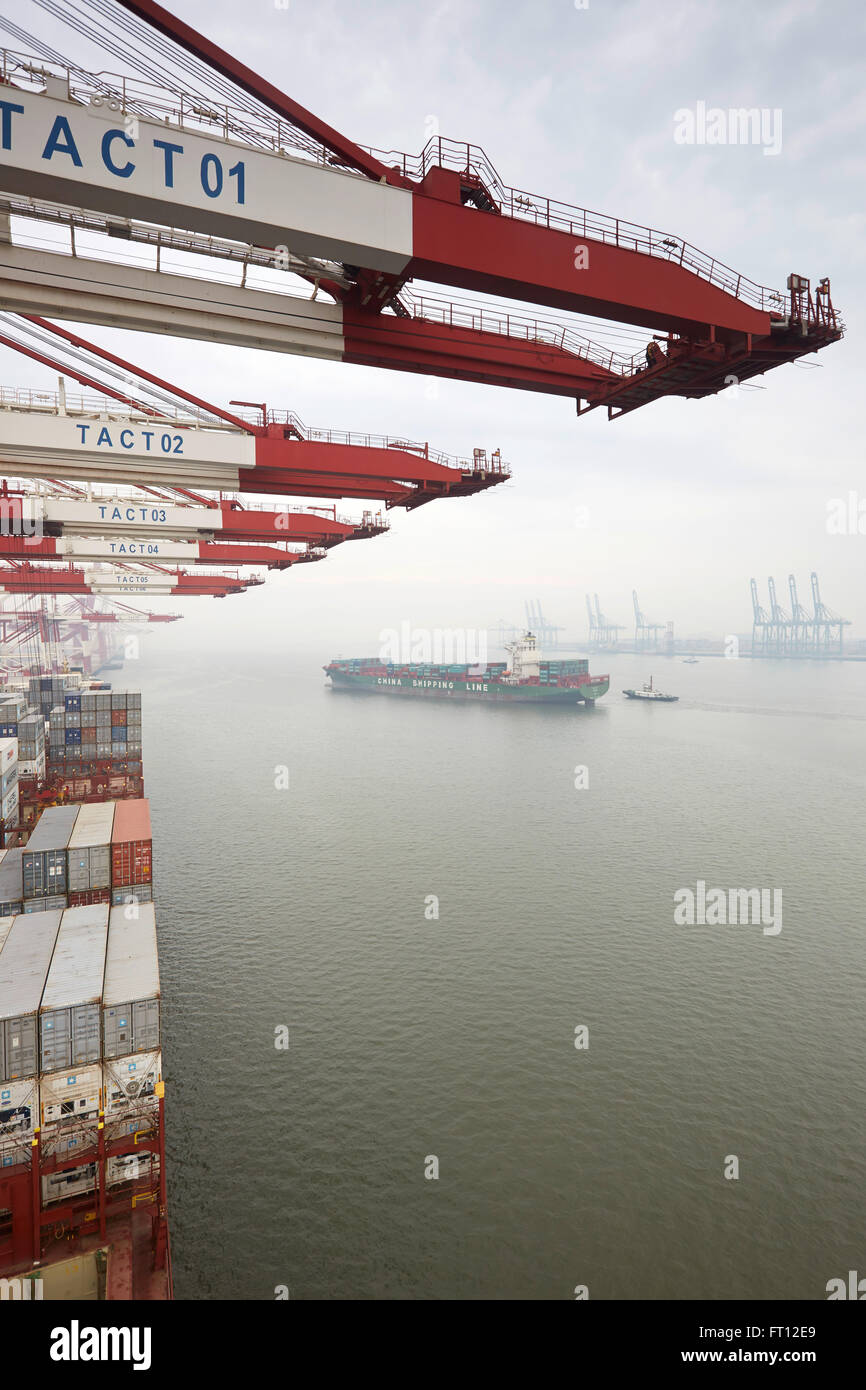 Container bridge, Port of Tianjin, Tianjin, China - Stock Image
