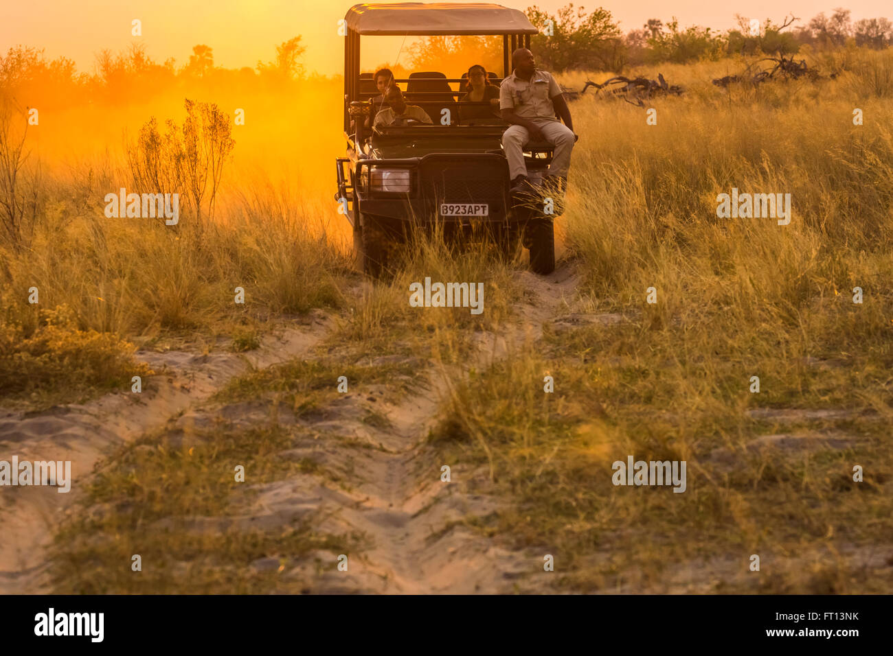 Safari jeep with wildlife guide-spotter on a game drive at sunset, Sandibe Camp, by the Moremi Game Reserve, Okavango - Stock Image