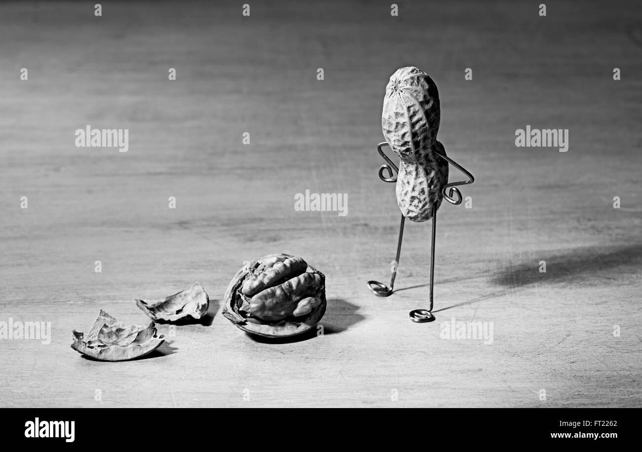 Miniature with Peanut Man and Walnut Brain - Stock Image