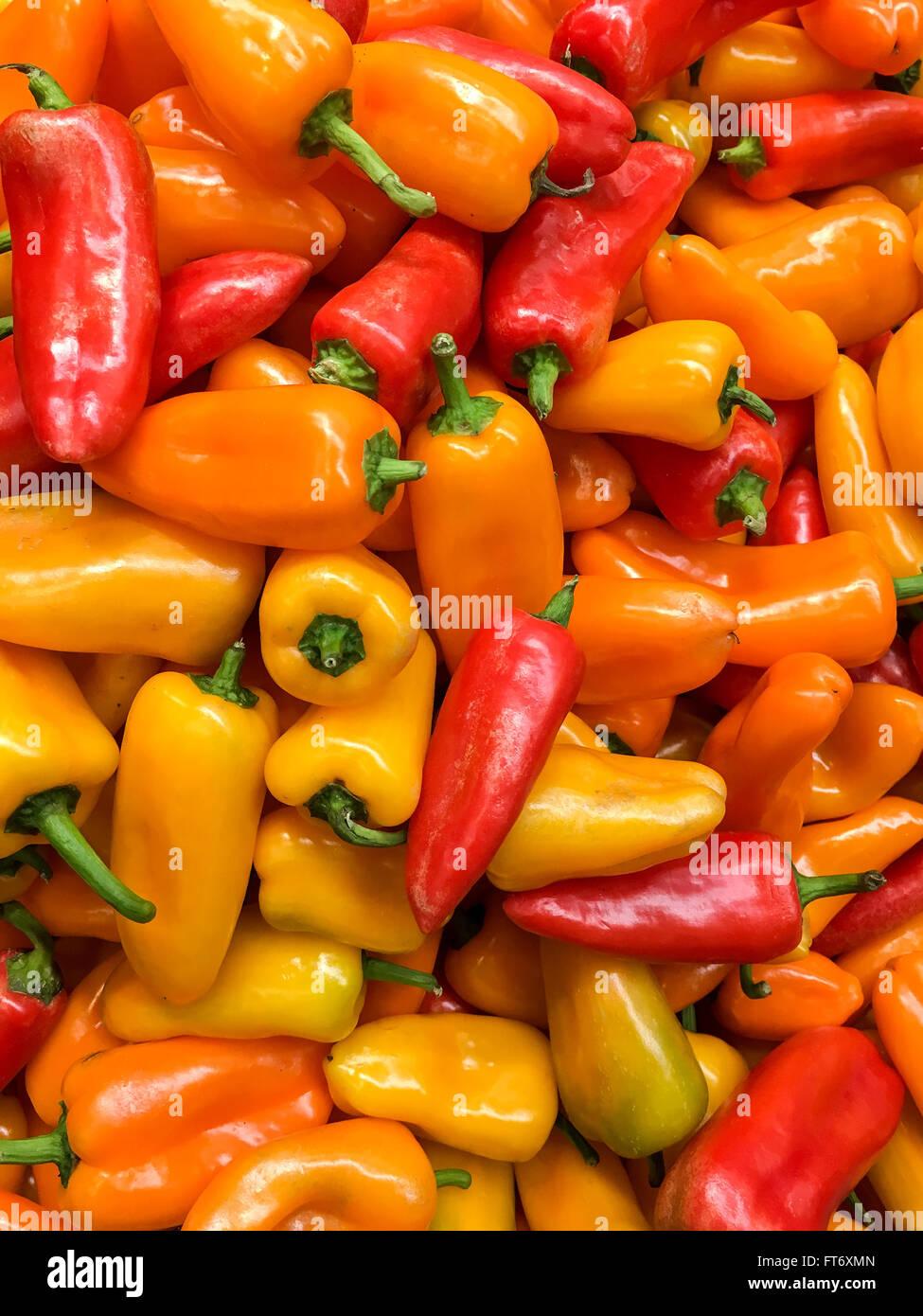 Red And Orange Capsicum In Vegetable Market Display - Stock Image