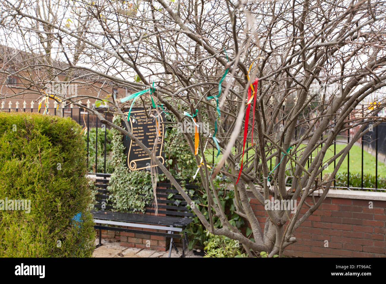 West Belfast, Ireland. 25th March, 2016. Ribbons attached to a tree in the D-Company garden of remembrance.  Preparations - Stock Image