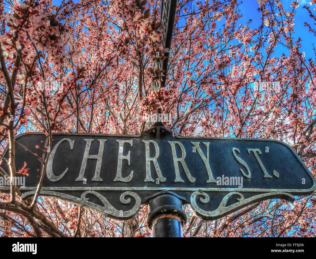 Spring weather - cherry blossoms decorate a Cherry Street signpost in Media, Pennsylvania, USA - Stock Image