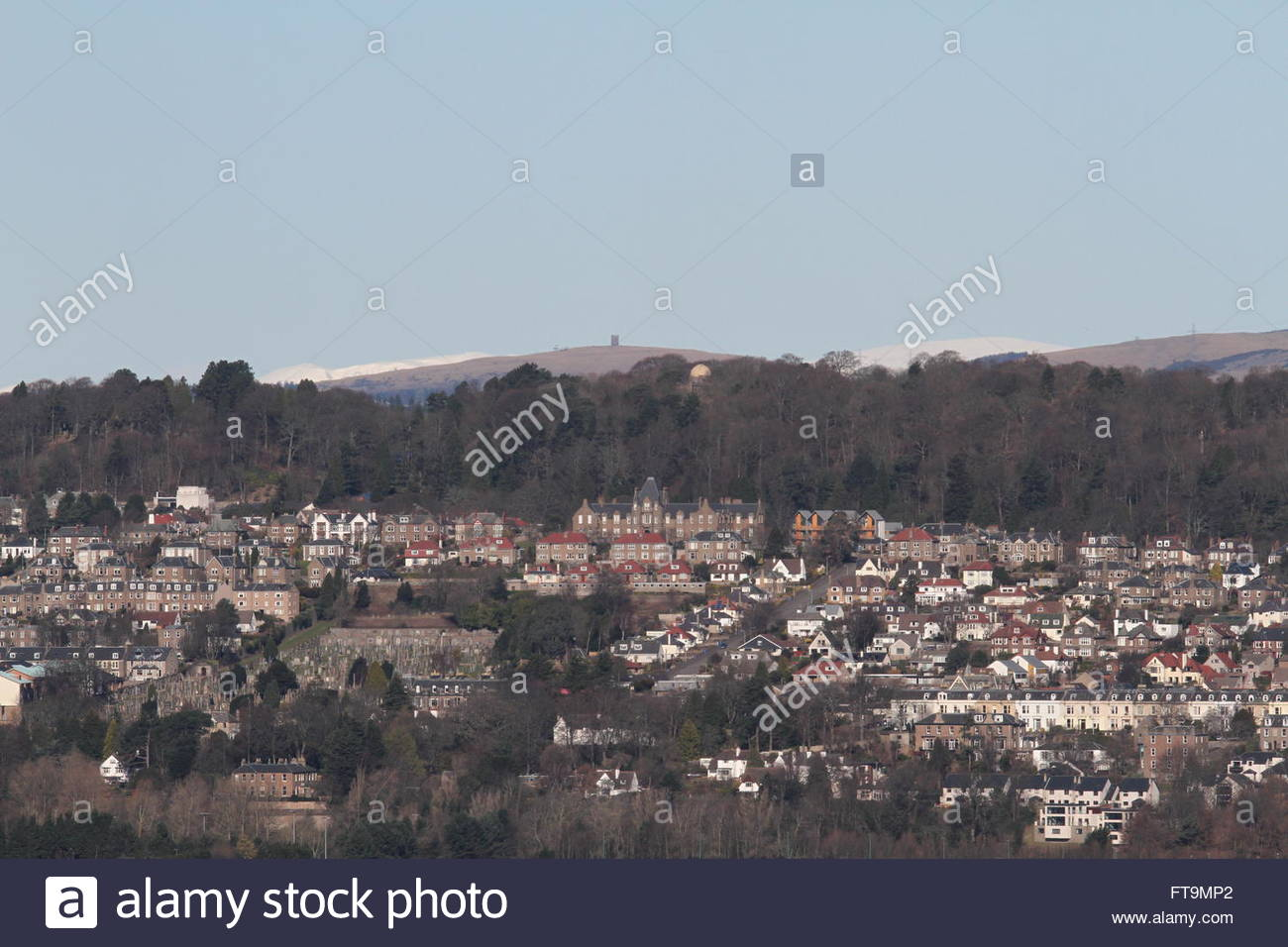 Distant view of Kinpurney Tower on Kinpurney hill Newtyle Scotland  March 2016 - Stock Image