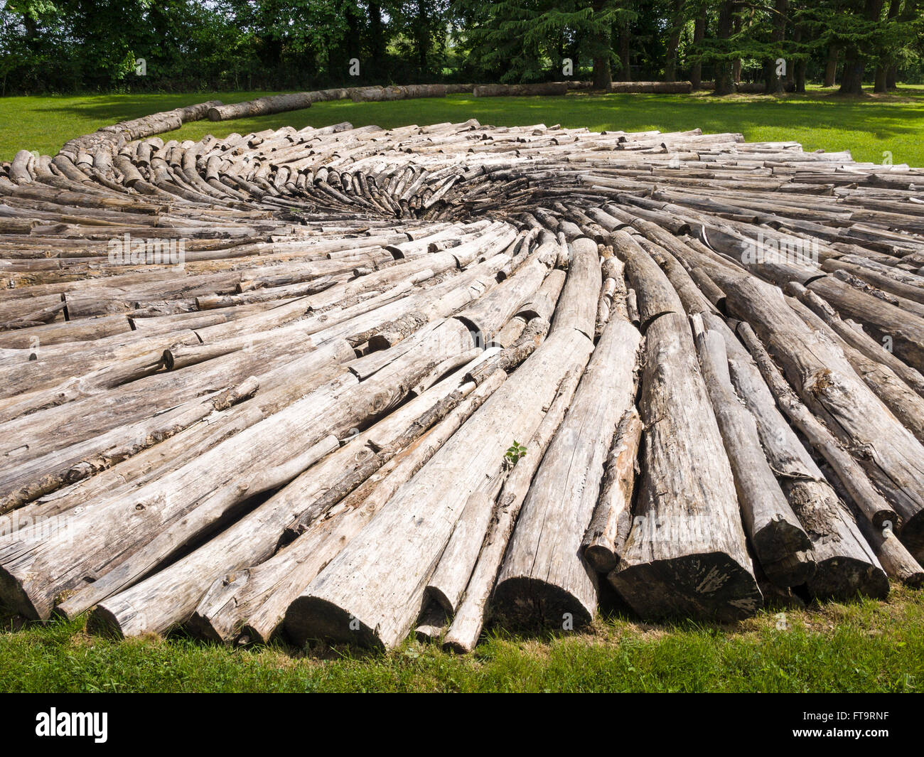 Carbon Pool, a landscape sculpture by Chris Drury. Consisting of logs arranged into a spiral the sculpture is like - Stock Image