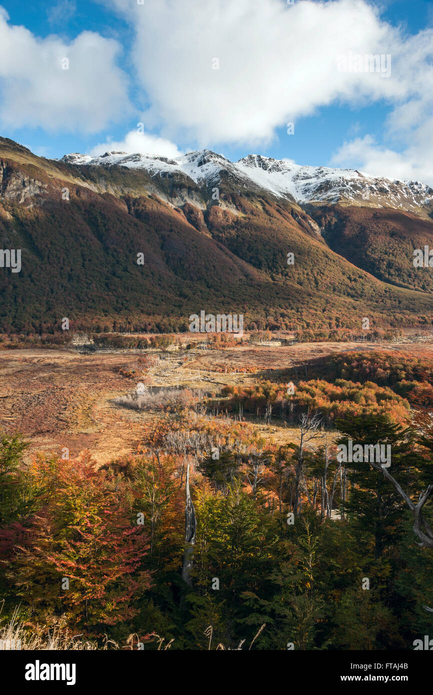 Autumn in Patagonia. Tierra del Fuego, Argentina side - Stock Image