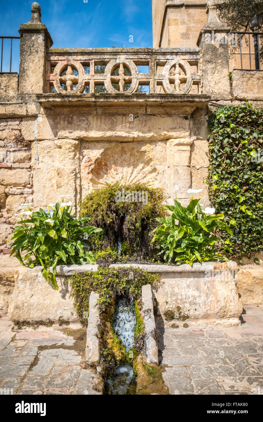 A Fountain In The Gardan Of The Alcazar Stock Photo 101038224 Alamy