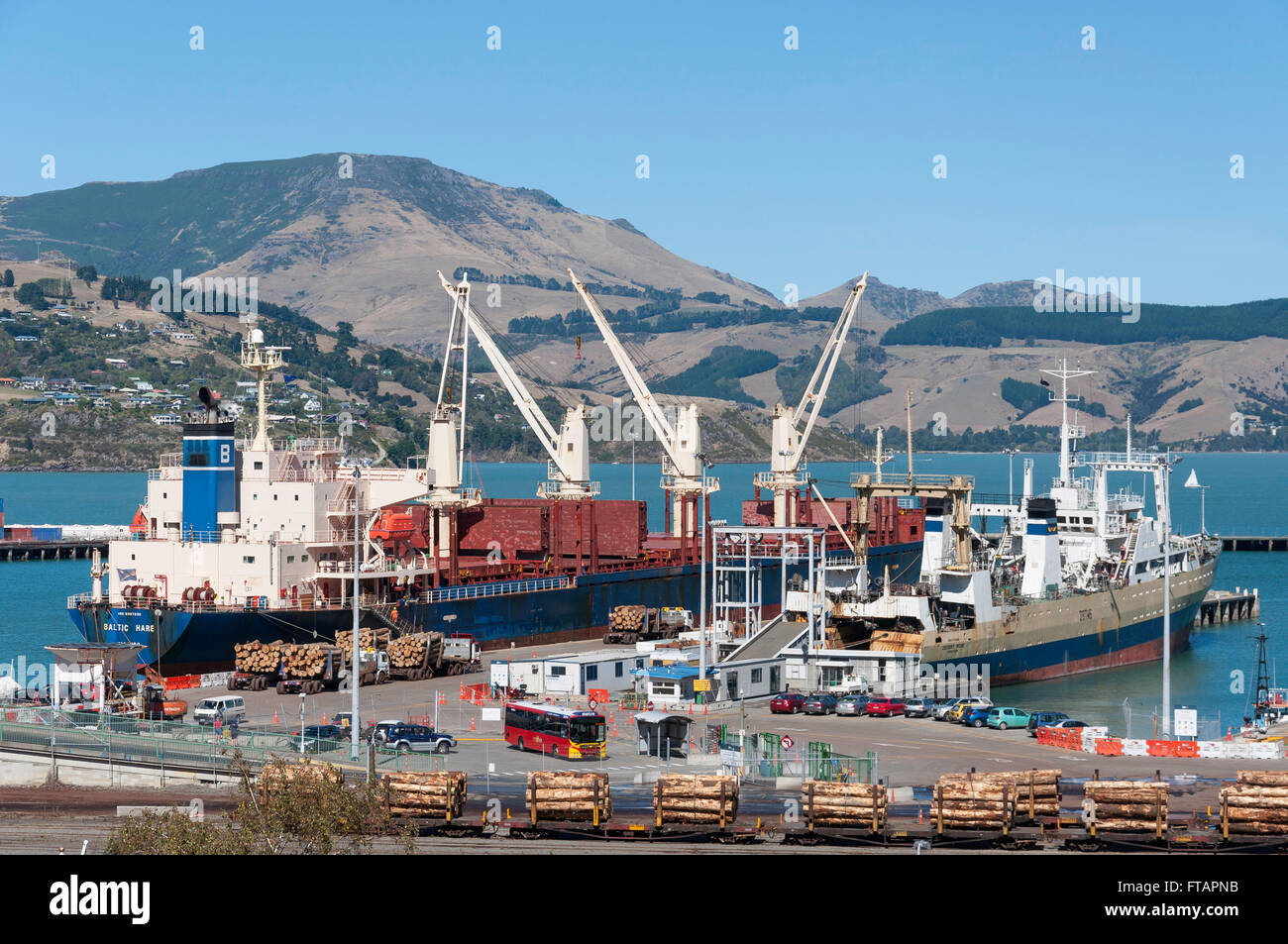 Piles of logs ready for loading at Container Port, Lyttelton, Lyttelton Harbour, Banks Peninsula, Canterbury, New - Stock Image