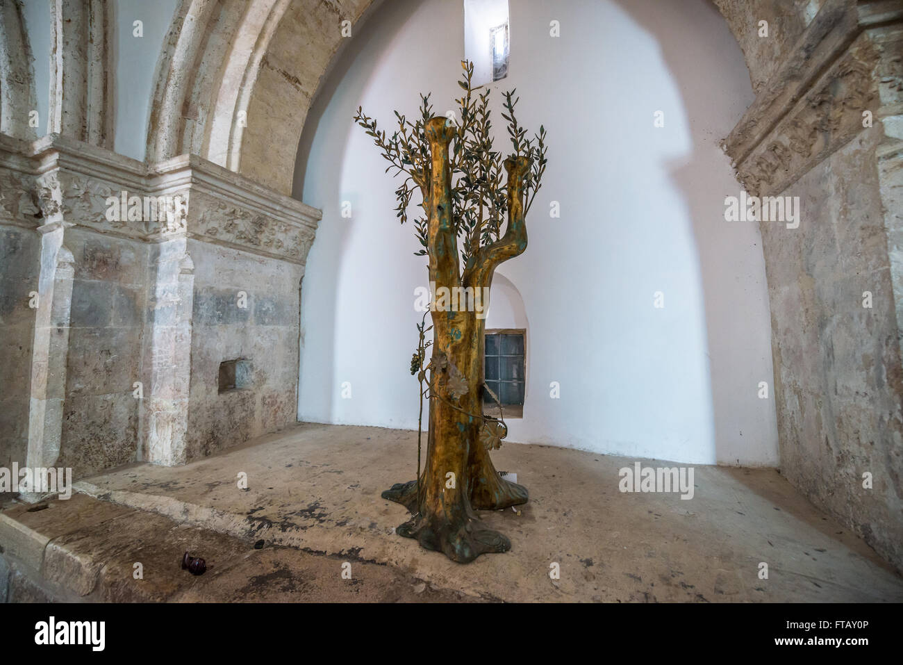 Olive Tree Sculpture In Cenacle Upper Room Held To Be A