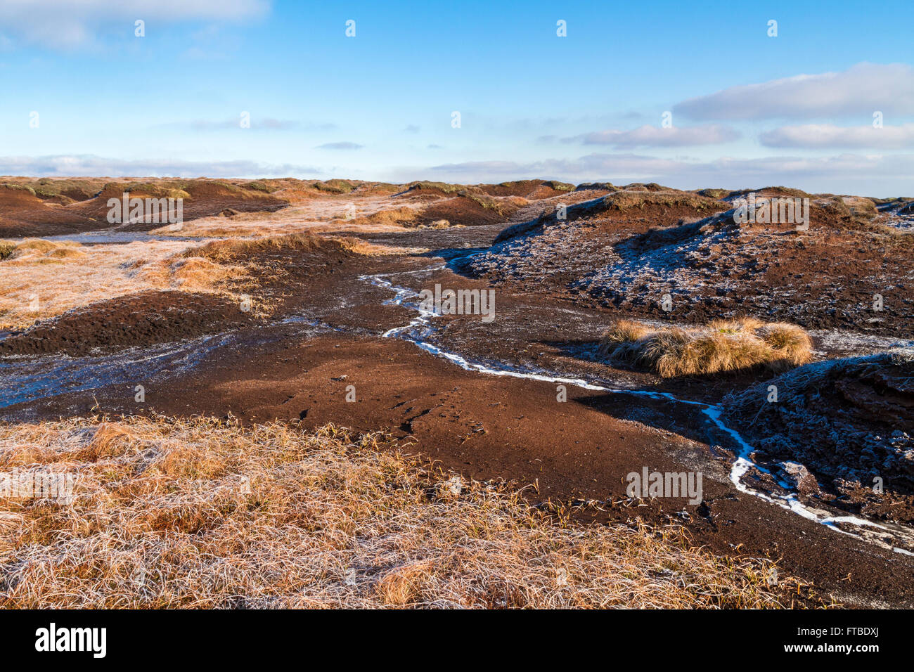 Winter sunlight on the frosty moorland of Edale Moor on Kinder Scout, Derbyshire, Peak District, England, UK - Stock Image