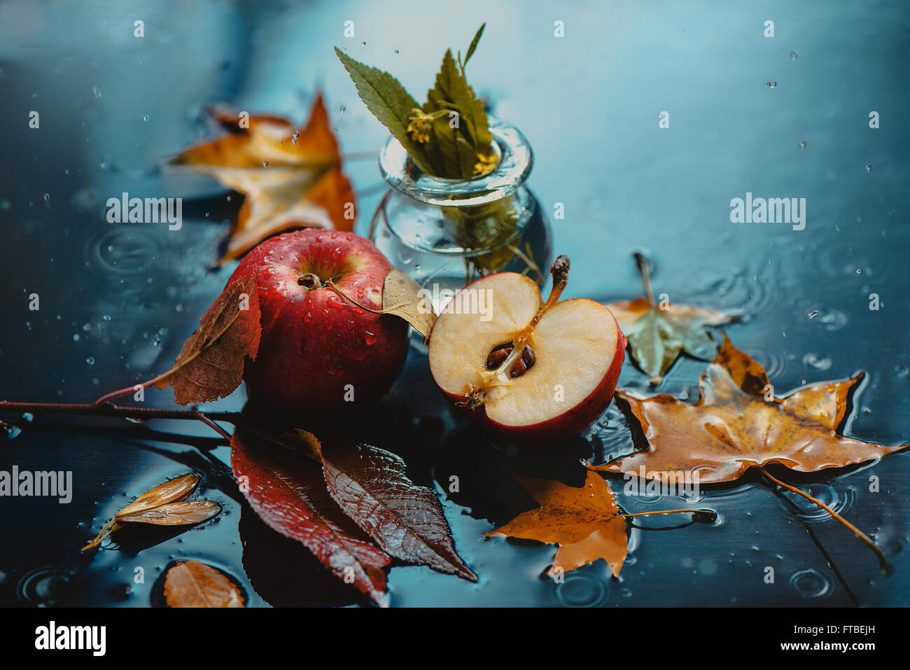 Autumn rain and apples - Stock Image